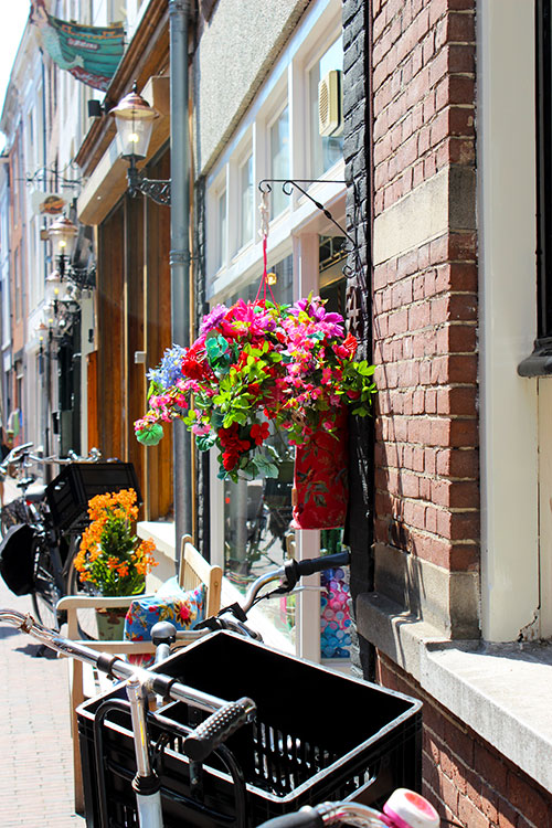 flowers bike Den Bosch Travellous World