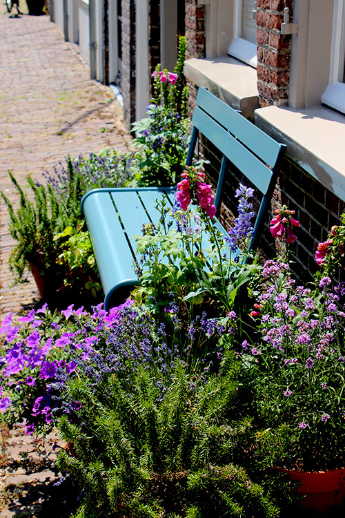 flower bench Den Bosch Travellous  World