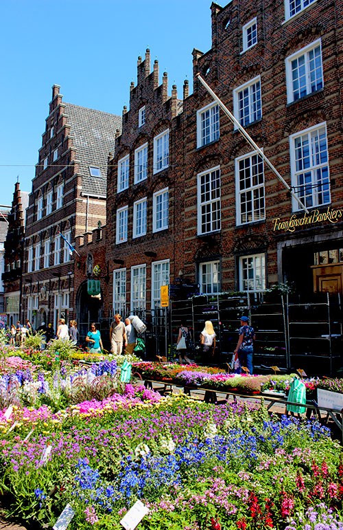Market den Bosch Travellous World