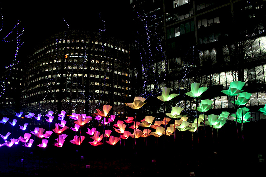 winter-lights-festival-flowers