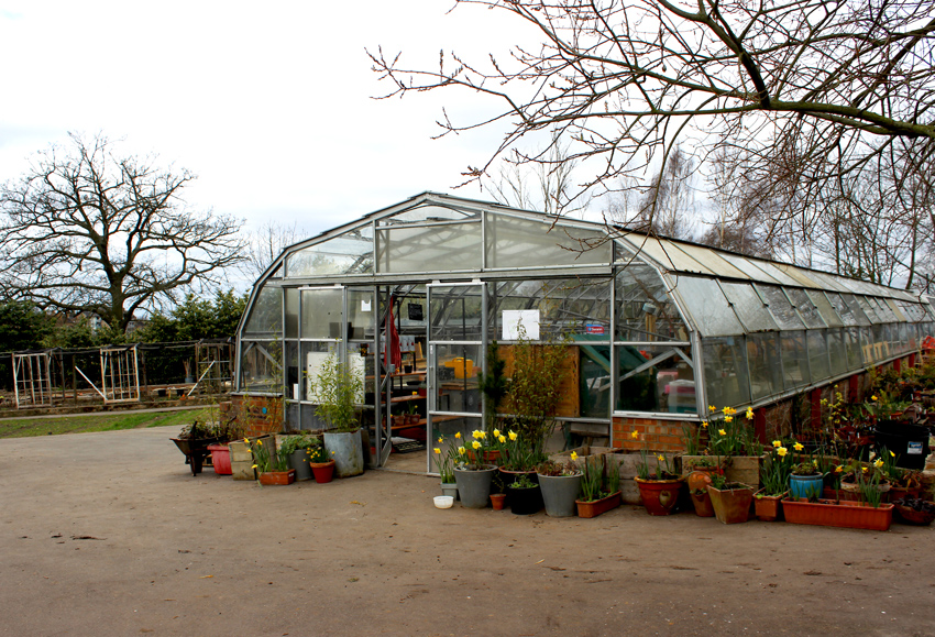 brockwell-park-community-greenhouse