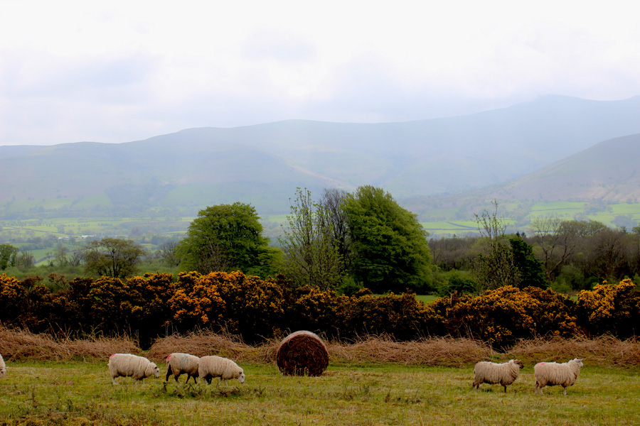 brecon-beacons-national-park
