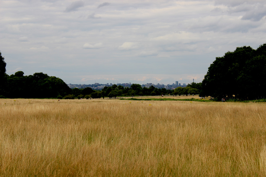 London-Views-Richmond-Park