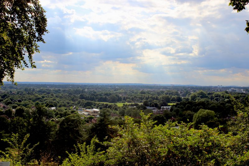 Walk the Walk: Twickenham & Richmond