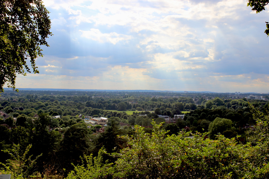 Richmond-Park-views