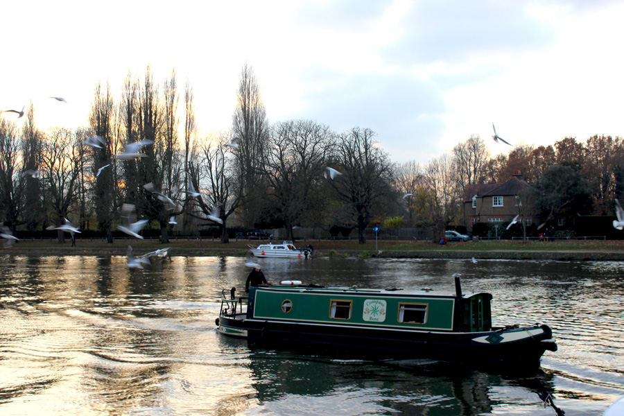 kingston-thames-river