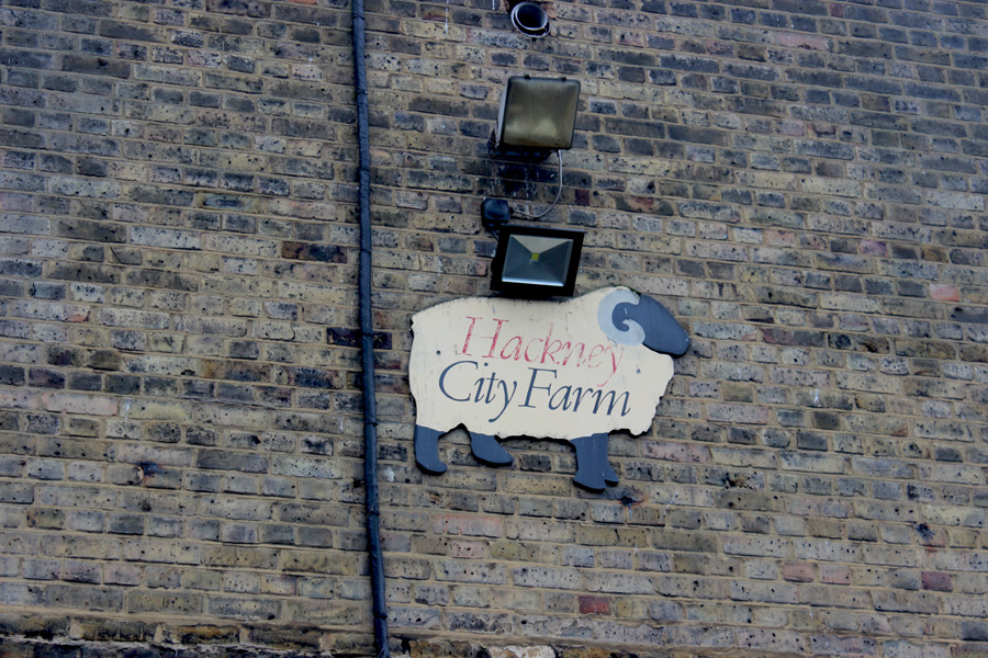 Hackney-City-Farm
