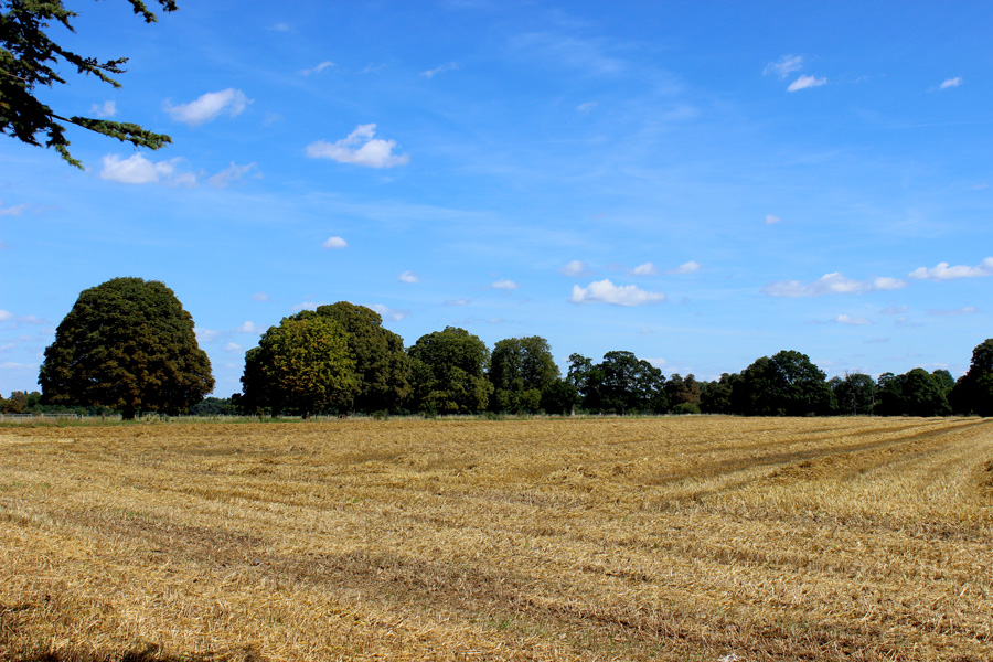 Osterley-countryside