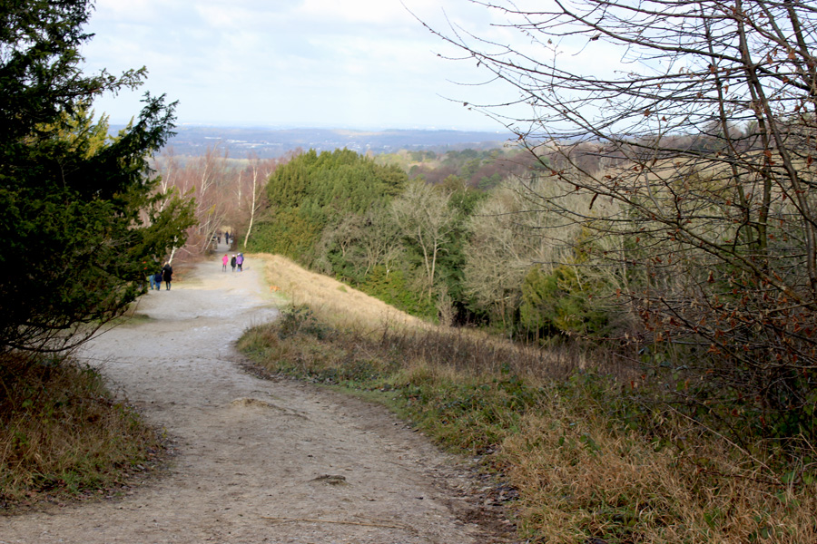 Box-Hill-path