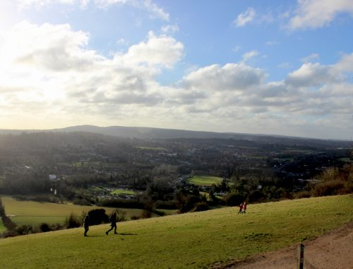 Box-Hill-surrey