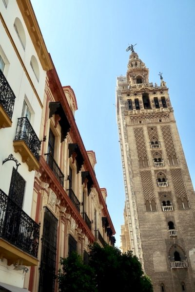 view on sevilla cathedral andalucia spain